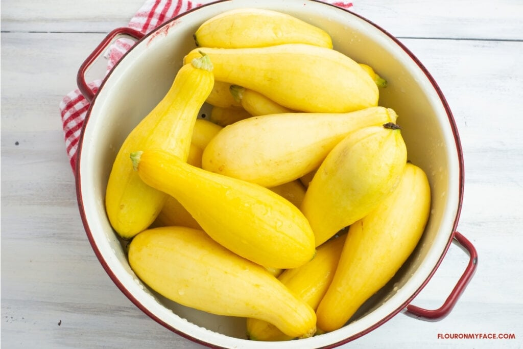 fresh yellow squash in a white enamel colander