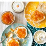 Homemade Peach Orange Marmalade on a toasted English muffin with cream cheese