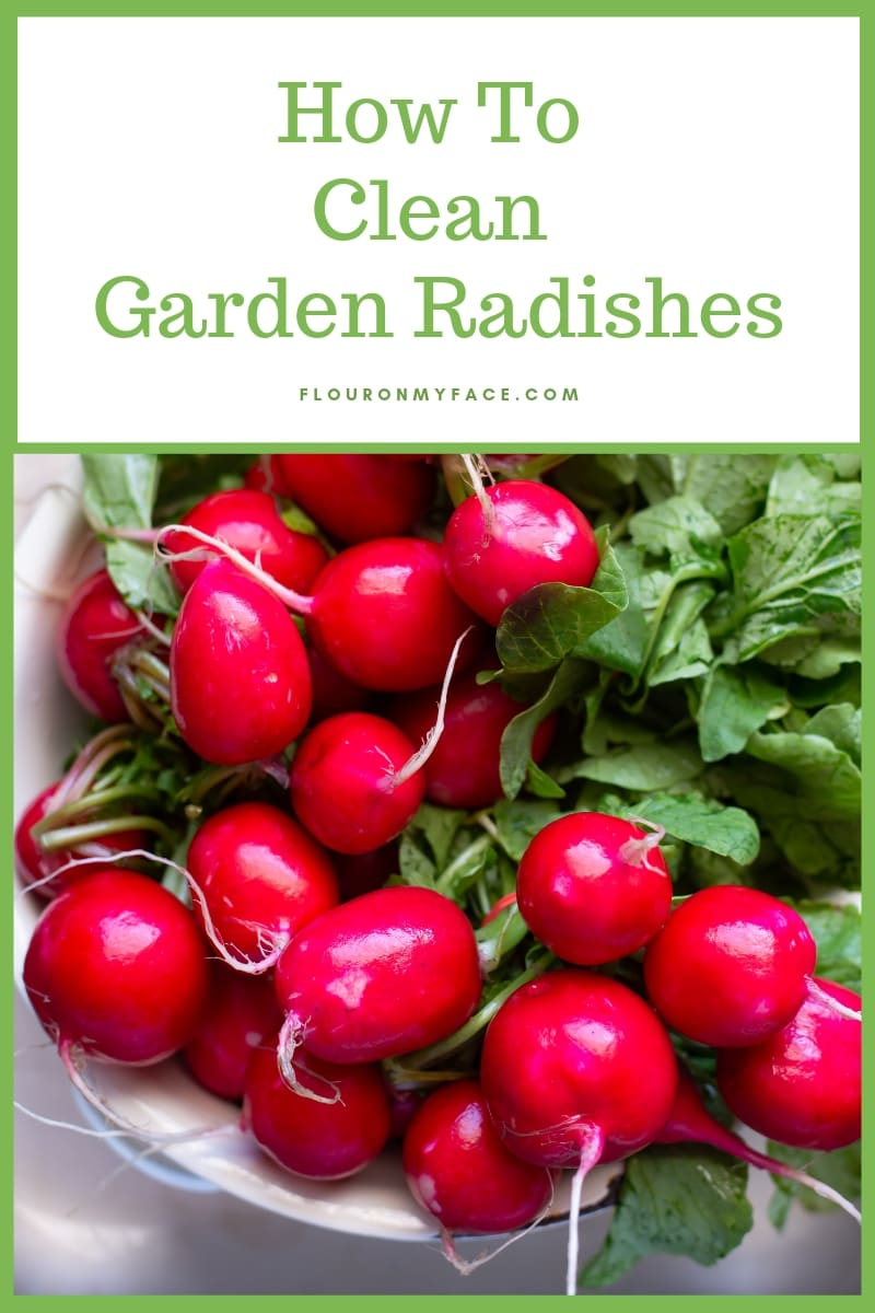 Tips for How To Clean Garden Radishes