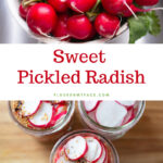 Quick Sweet Pickled Radish in 16 oz mason jars