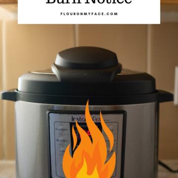 Instant Pot Burn Notice image