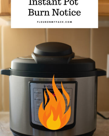 Instant Pot Burn Notice image