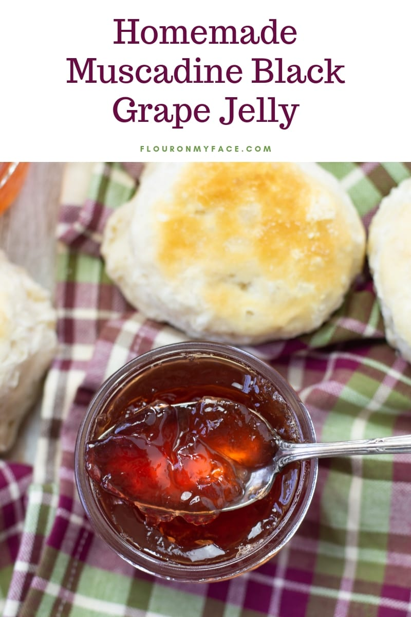 homemade muscadine black grape jelly in a jar