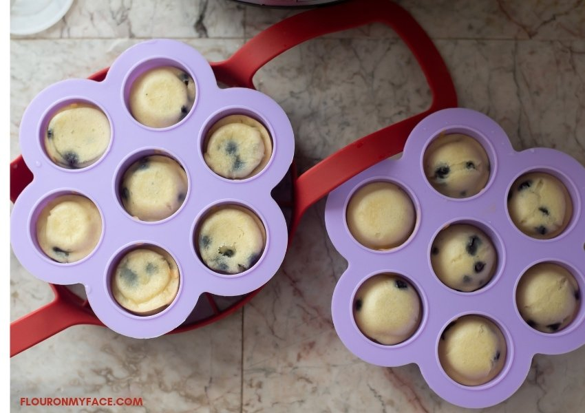 Cooked Blueberry Muffin Bites, still in the Silicon Egg Bites Molds
