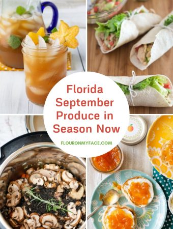 featured image with previews of recipes using fresh Florida produce in September