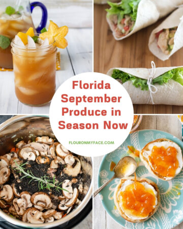 Recipes using Florida September Produce