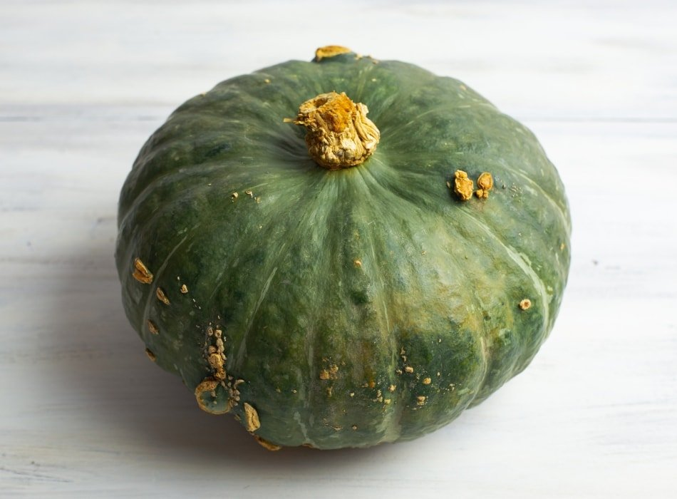 Green and bumpy Kabocha Squash
