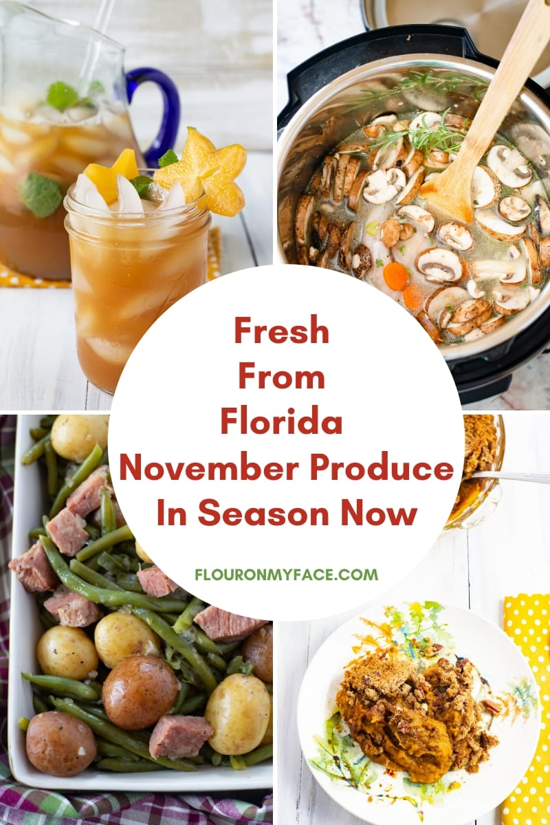 Collage photo showing a preview of some of the recipes made with fresh from Florida produce that is in season during the month of November.