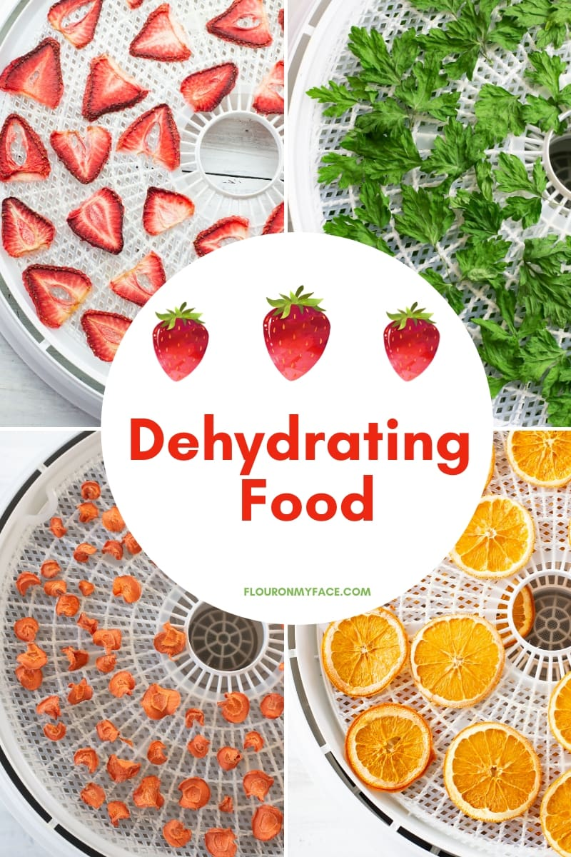 Featured image for the Dehydrating Food page