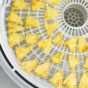dehydrated pineapple pieces on the tray of a food dehydrator