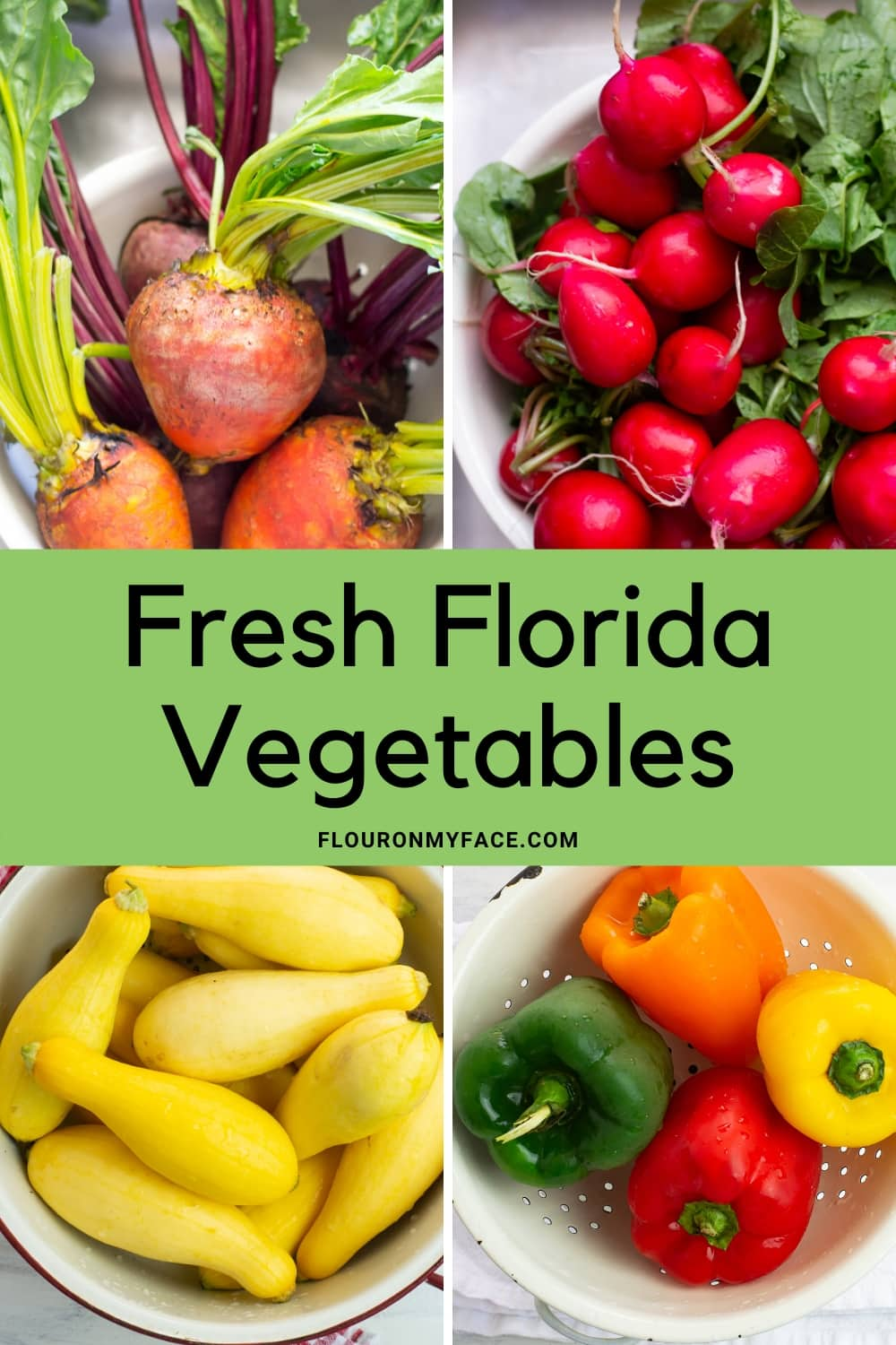 Collage Pictures of Fresh golden beets, radishes, yellow squash and sweet bell peppers all Florida Vegetables