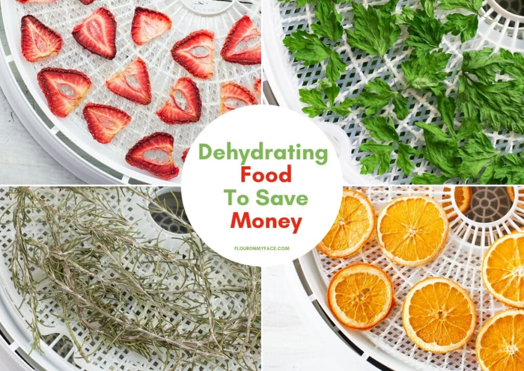 Collage image od dehydrated recipes page