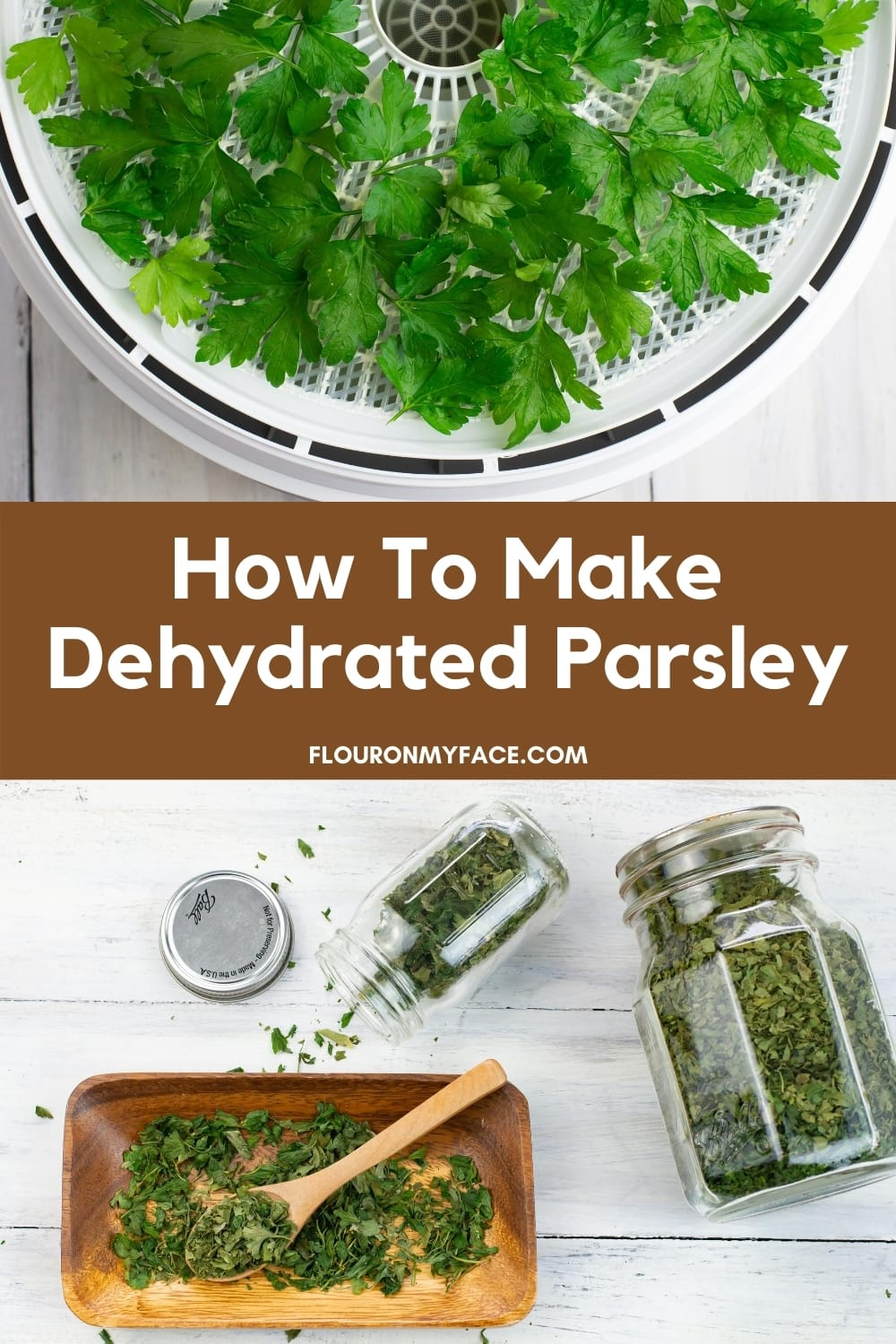 Image showing fresh parsley on a dehydrator tray with an image below showing how the dried herb can be stored in jars for use and long term storage.
