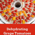 Dehydrating Grape Tomatoes