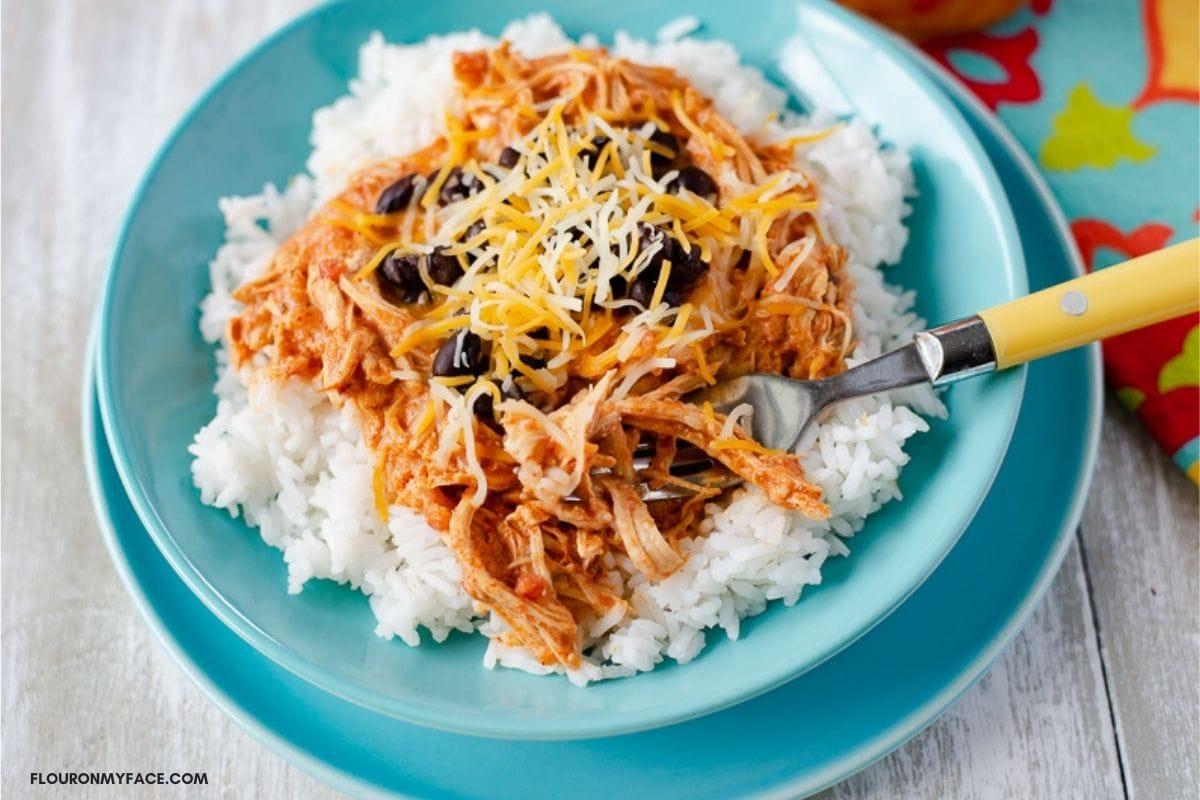 Chicken Salsa served over white rice