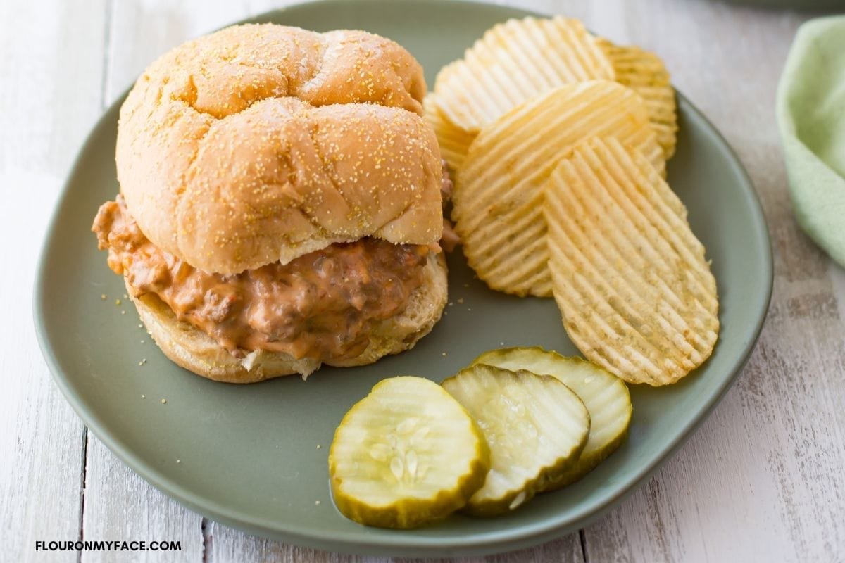 Salsa Sloppy Joe served on a bun with chips and pickle slices.
