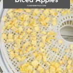Long vertical image of dried diced apple pieces on a dehydrator tray.