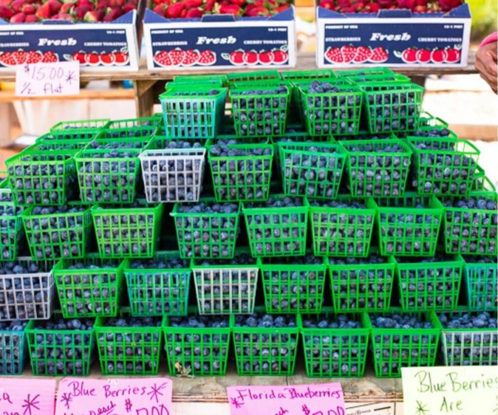 fresh blueberries in green baskets at the farmers market.