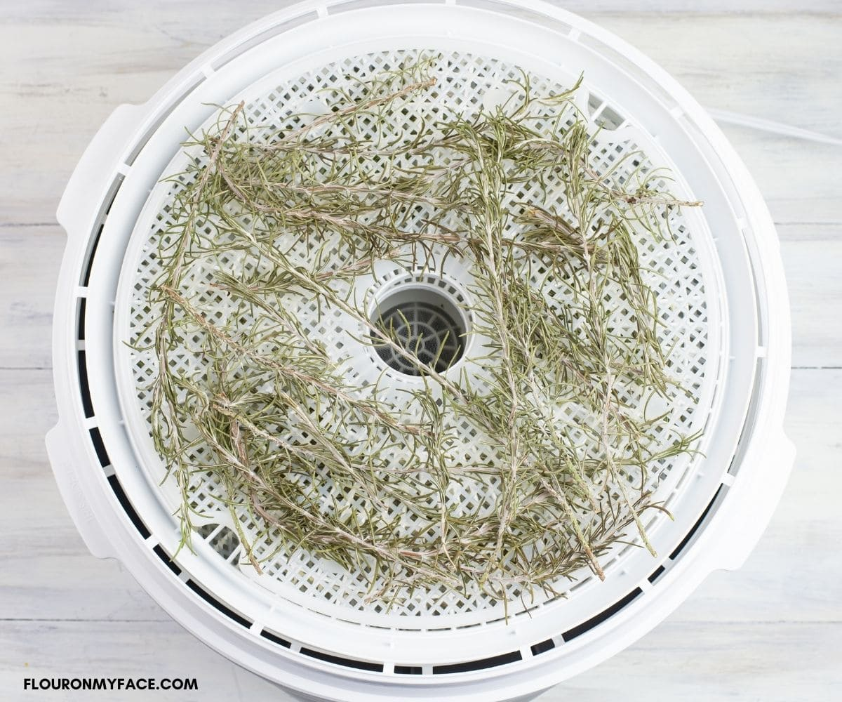 Dried rosemary on a drying tray.