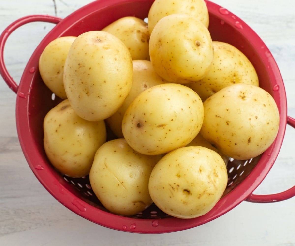 White potatoes in a small red enamel colander.