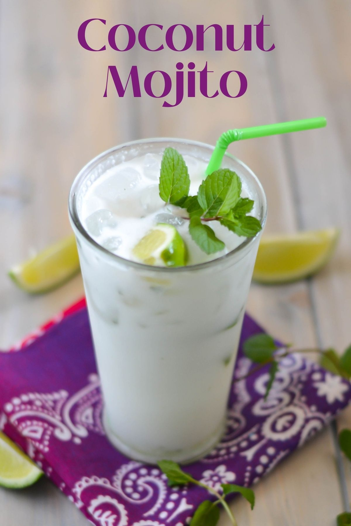 Photo of a tall glass filled with a coconut mojito garnished with lime wedge and mint.