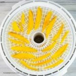 Overhead image of dried mango slices on a round dehydrator tray.