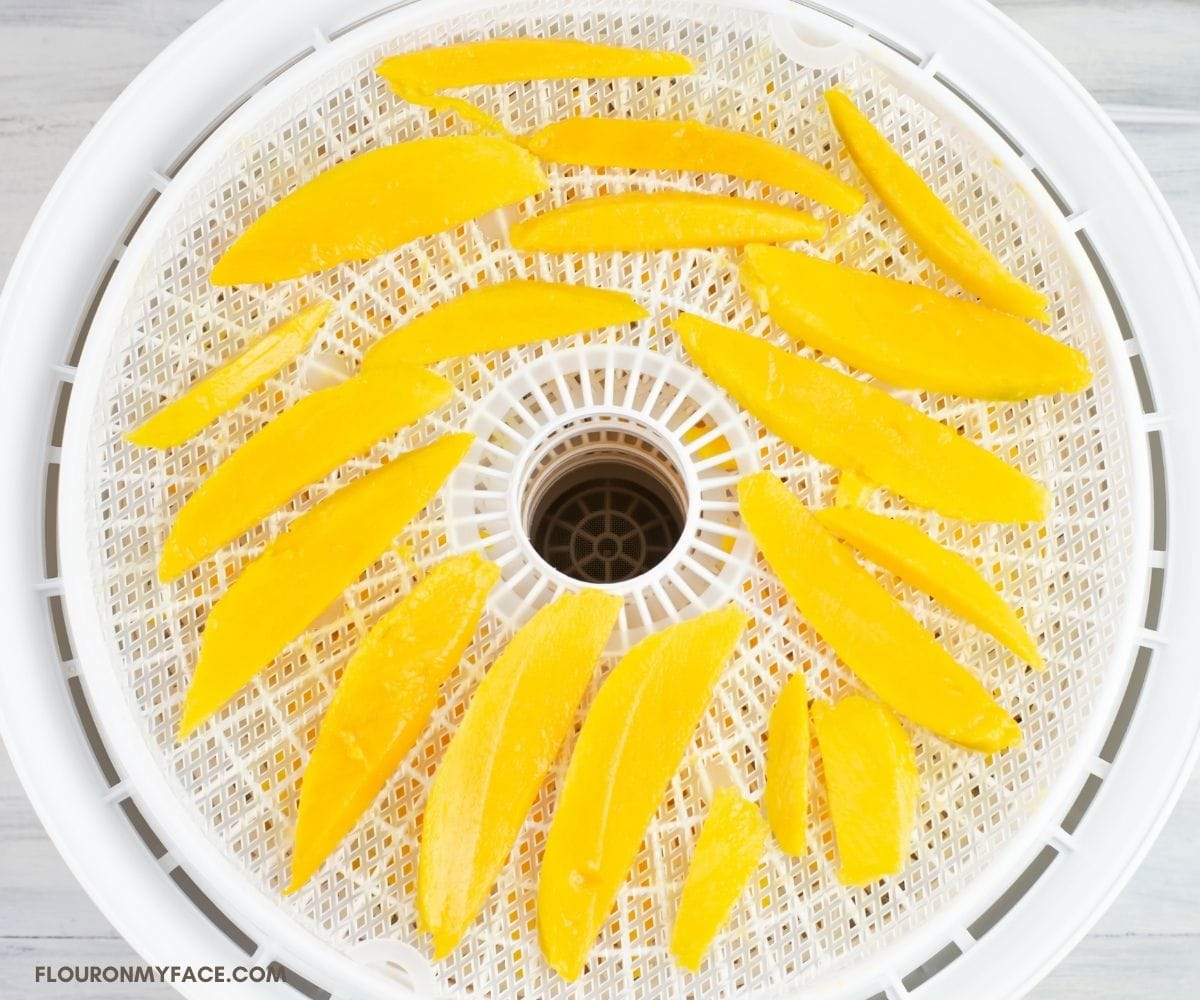 Sliced pieces of fresh mango arranged in a single layer on a dehydrator tray.