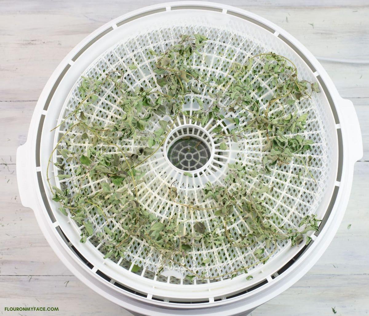 Dried oregano stems on a rough dehydrator tray.